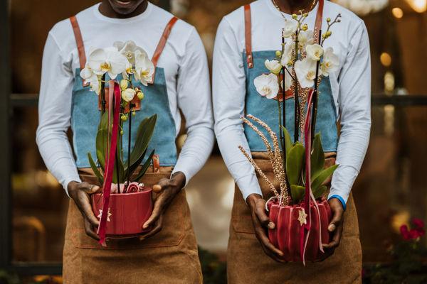 Immagine di Complemento con orchidea