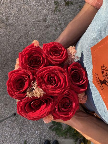 Immagine di Cilindro di Rose