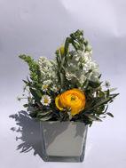Immagine di Cubo vetro con fiori